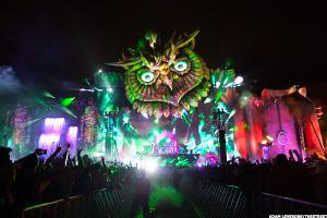 Electric Daisy Carnival Brings Festival Finance Boom