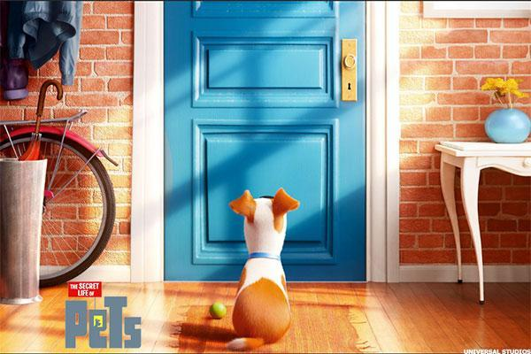 Comcast (CMCSA) Stock Up Ahead of 'The Secret Life of Pets' Opening