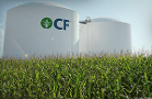 Natural Gas Gives CF Industries a Headache