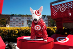 Jim Cramer Explains Something Key About Target Hours Before Earnings