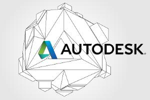 Wait for the Pullback on Autodesk