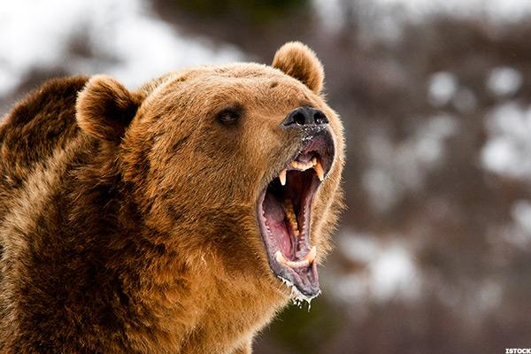 To the Perma-Bulls Out There: We Are in a Bear Market