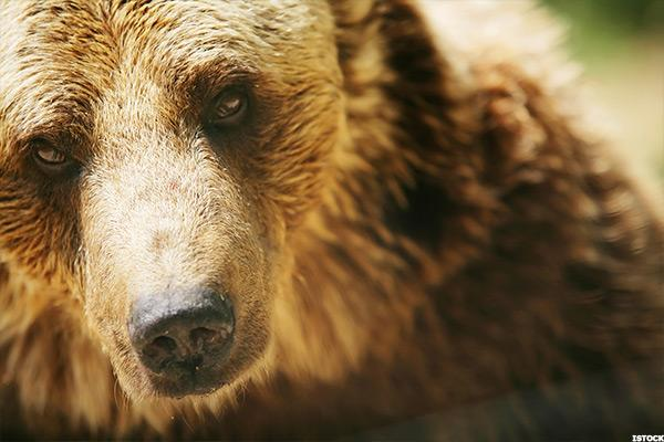 Trader's Daily Notebook: It's Too Early to Put on the Bear Suit
