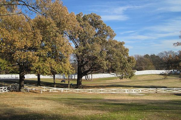 The Grounds of Graceland