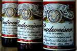 Get Drunk on Budweiser's Stock, Goldman Sachs Hints