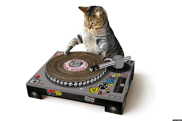 17. Cat turntables