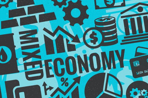 mix economic system