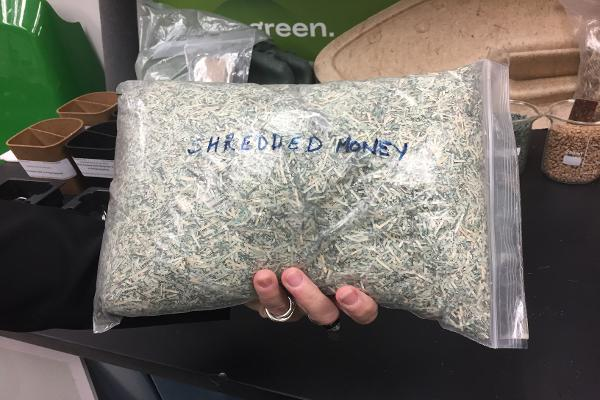 Shredded money, compliments of the Federal Reserve.