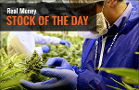 Tilray Stock Gains Ahead of Highly Anticipated Earnings Release