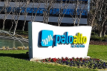 Don't Bottom Fish in Palo Alto Networks
