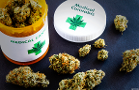 The New Small Biotechs Heating Up the Medical Cannabis Space