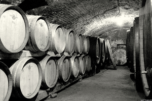Exquisite Austrian Wines You Just Have to Try