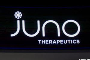 Patient Deaths, Safety Concerns Cause Juno's CAR-T Pipeline to Skid Out