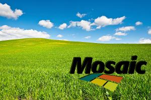 Will Mosaic (MOS) Stock Be Helped by Possible Vale Fertilizer Unit Buy?