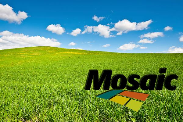 Shares of Mosaic Co. Set to Rally Further