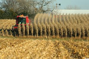 Don't Ignore Agricultural ETFs