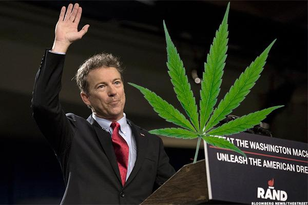 3 Pot Stocks to Buy If Rand Paul Becomes President
