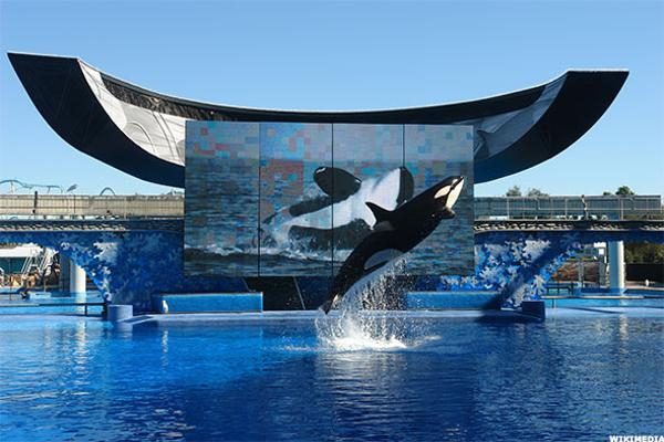 SeaWorld Slips After Former Bull Says Sell as Competition Grows