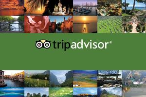 TripAdvisor's Stock Needs a Vacation